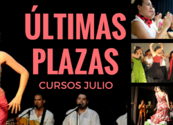 Últimas plazas cursos julio 2015